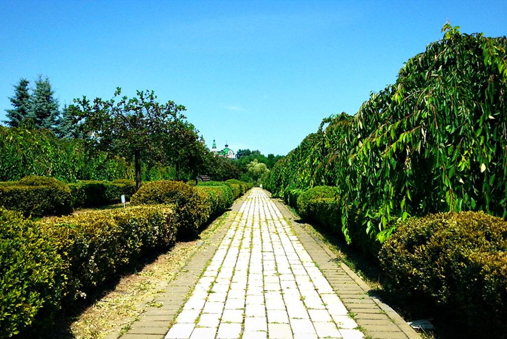 Феофания свадебная прогулка
