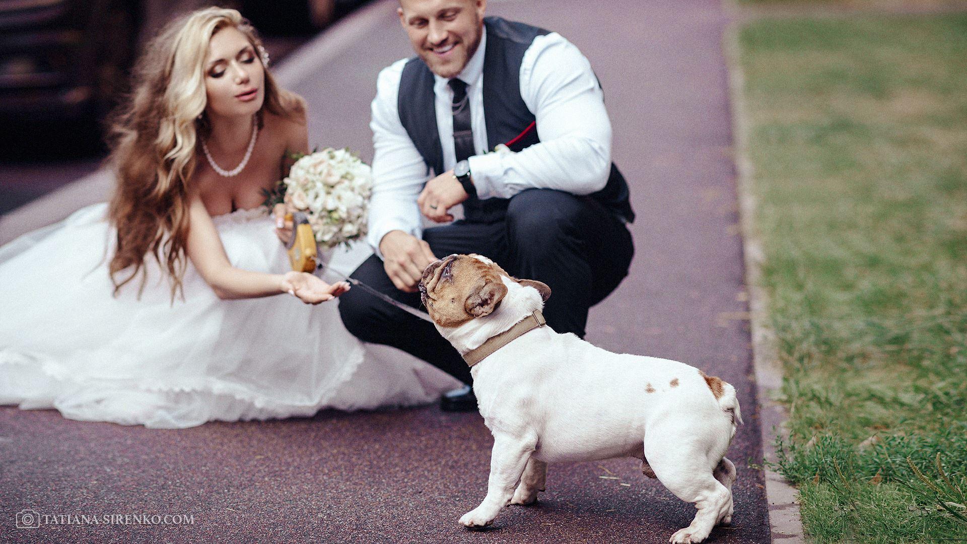 Свадебная фотосессия самая красивая